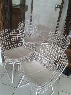 4 chaises Harry Bertoia édition Knoll